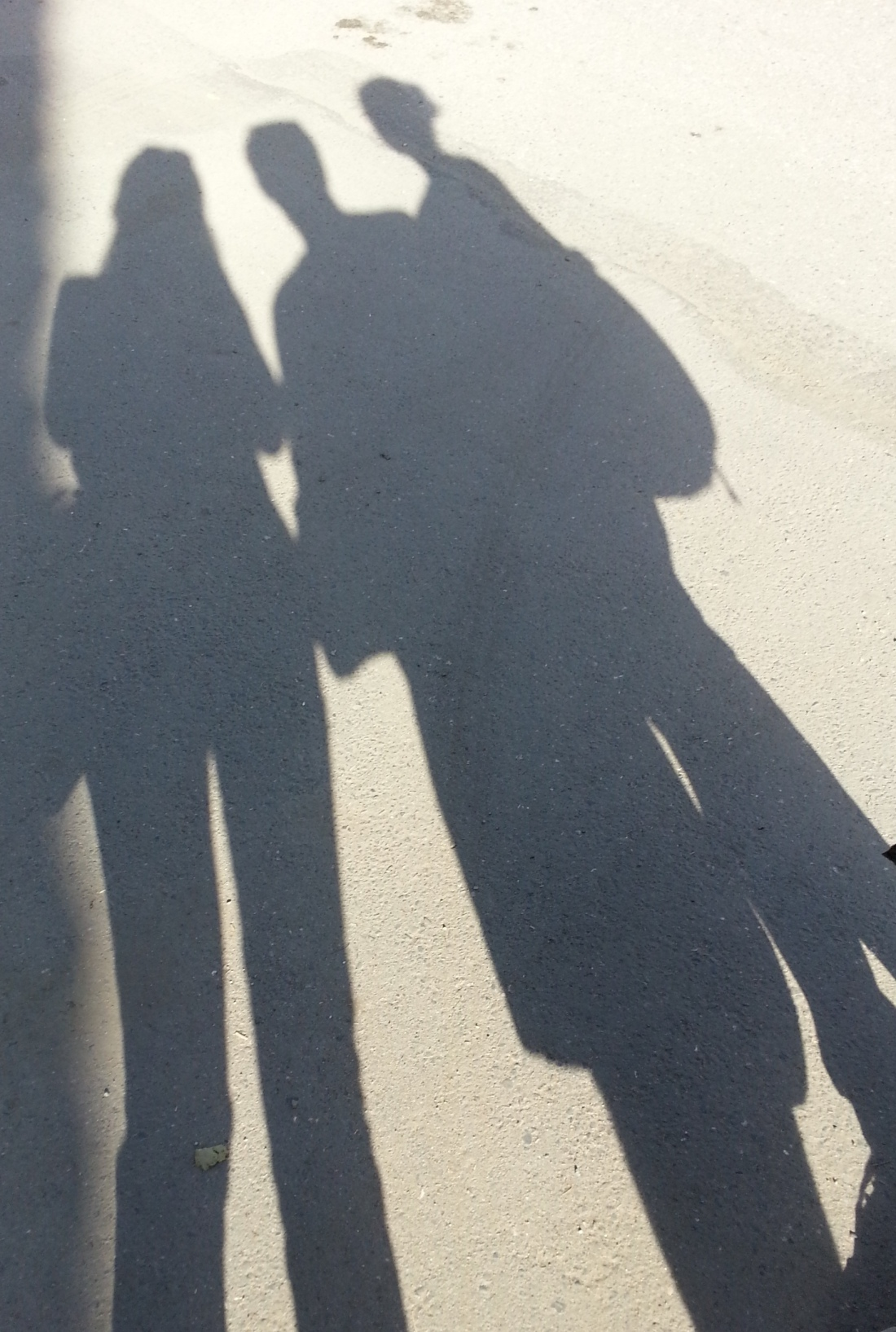 Our Shadow Selves