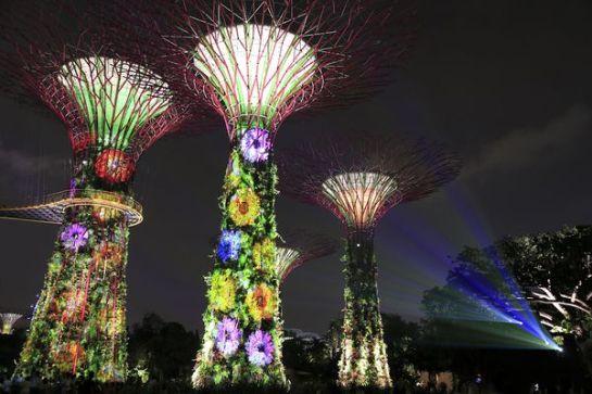 Singapore Light Garden