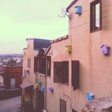Tbilisi Bird Houses